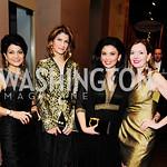 Shamin Jawad,Lala Abdurahimova,Rosa Djalal,Marie Royce,Prev...er Foundation's Festa Della Donna,March 8 20013,Kyle Samperton