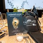 Photo by Tony Powell. 2018 Capital Caring Gala. Marriott Marquis. November 17, 2018