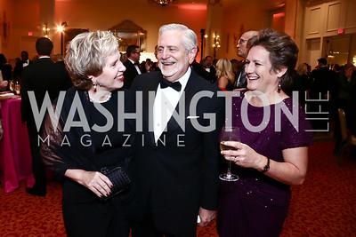 Lisa Barry, Jim Gale, Dawn Fenton. Photo by Tony Powell. Mentor Foundation USA International Gala. Mayflower Hotel. September 22, 2015